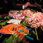 Tulpenrallye 10 mei 2014 (69 van 87)